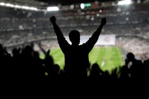 Stadium Fan